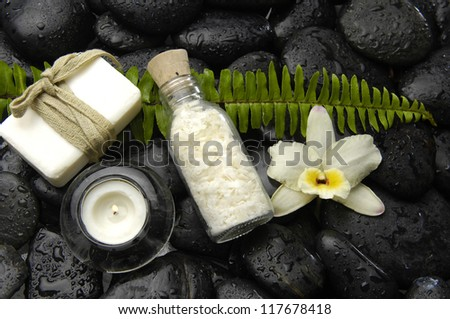 Green fern with white orchid and massage oil on wet stones background