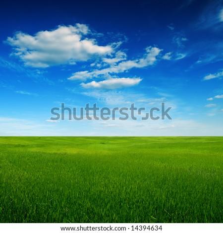 green field - Shutterstock ID 14394634