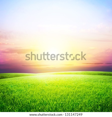 Green Field and Beautiful Sunset #131147249