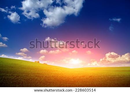 Green Field and Beautiful Sunset #228603514