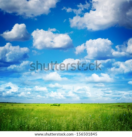 green field and blue sky #156501845