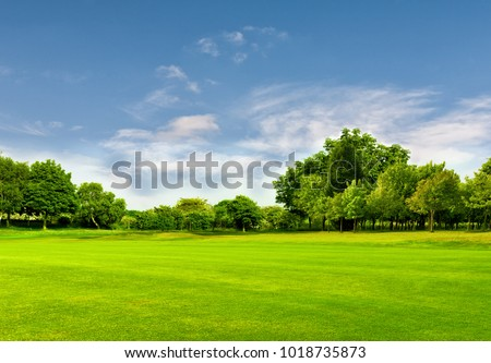 Green field and blue sky in spring.Great as a background