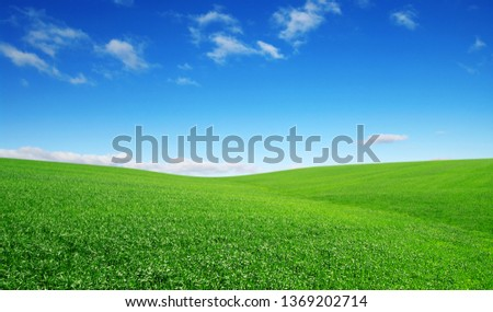 green field and blue sky with clouds #1369202714