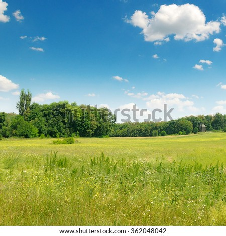 green field and blue sky with clouds #362048042