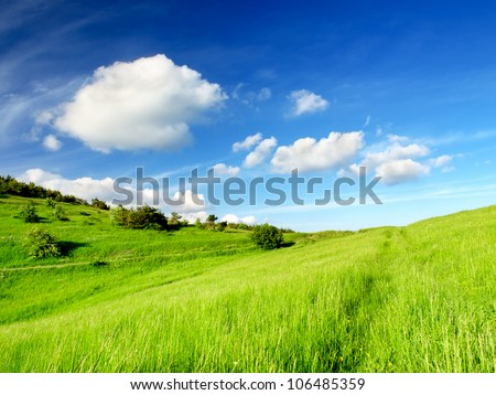 Green field and blue sky with clouds. Bright summer landscape
