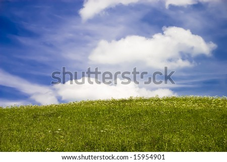 Green field and blue sky with fluffy clouds