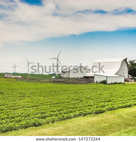 Green field and clean energy concept. Village country farm with poultry house, wind farm and corn and alphalpha crops.