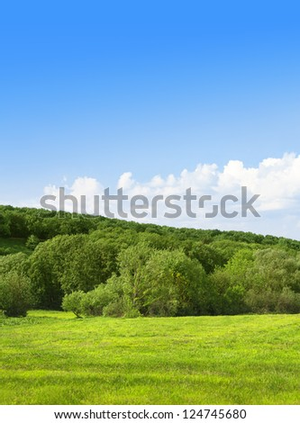 Green field and forest on background of the sky. Summer landscape