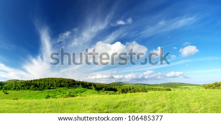 Green field and large sky with clouds. Bright summer landscape