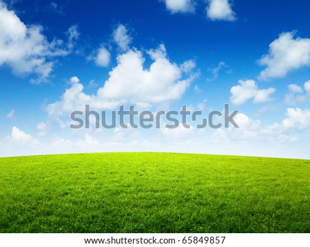 green field and sunny day