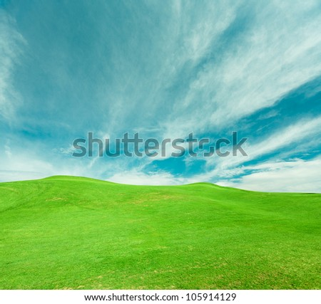 Green field and the sky