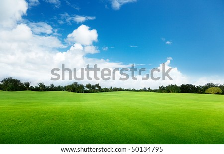 green field and trees #50134795