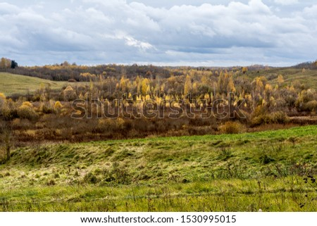 Green field and trees with yellow and orange foliage. Beautiful autumn landscape on a cloudy day with a cloudy sky. #1530995015