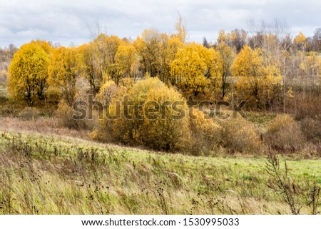 Green field and trees with yellow and orange foliage. Beautiful autumn landscape on a cloudy day with a cloudy sky. #1530995033