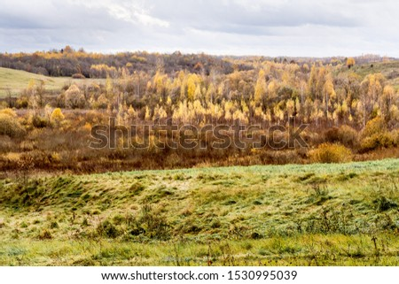 Green field and trees with yellow and orange foliage. Beautiful autumn landscape on a cloudy day with a cloudy sky. #1530995039
