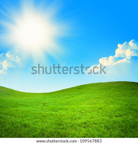 green field at beautiful summer day with sun