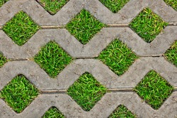 green field background in  texture concrete