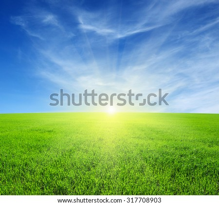 Green field,blue sky and sun.  #317708903