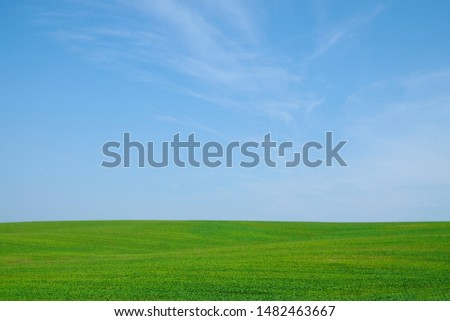 Green field hills isolated on sky background. Ukrainian nature. Copy space. Copy space.