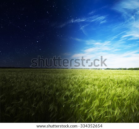 Green field in day and night. #334352654
