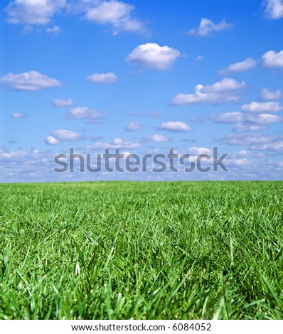Green field landscape with blue sky and white clouds