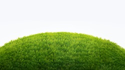 green field of fresh grass isolated on white. natural easter background