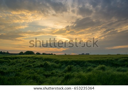 Green field of grain after a storm with glowing clouds at dawn #653235364