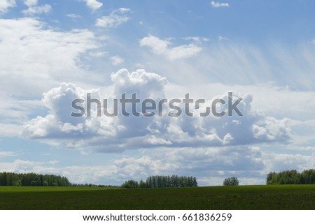 Green field on a background of the blue sky with huge clouds #661836259