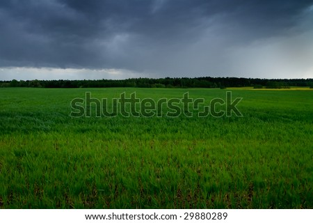 green field on a stormy day