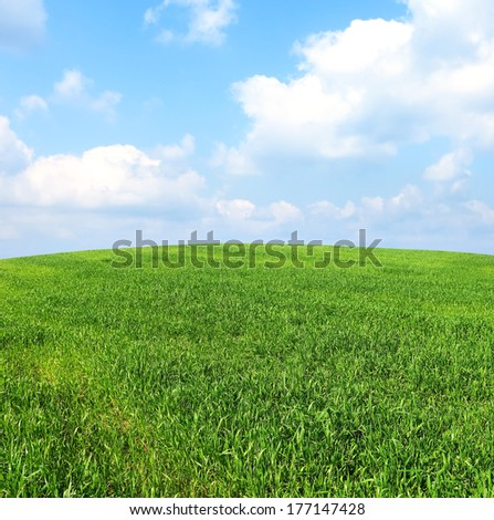 Green field panoramic landscape
