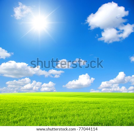 Green field,  sky and sun