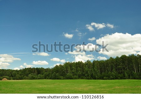 green field, the green wood and the blue sky with fluffy white clouds