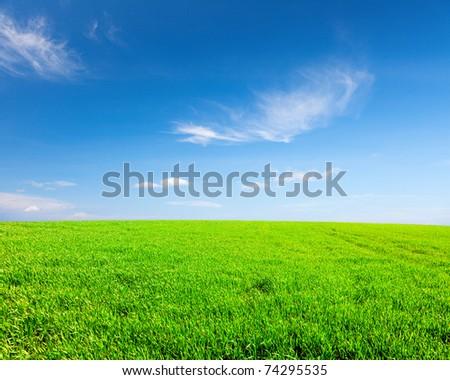 Green field under blue cloudy sky - stock photo