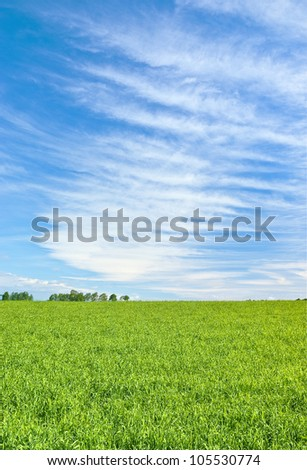 Green field under striped sky - stock photo
