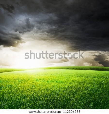 Green field under sunset sky. Beauty nature background