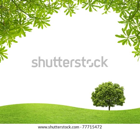green field with a big tree and green Leaves on white background