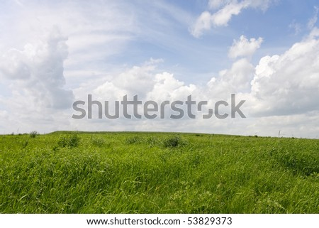 Green field with cloudy sky