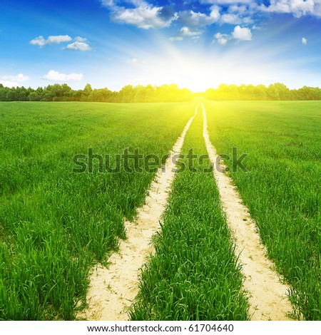 Green field with road and sun.