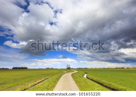 Green field with road in summer