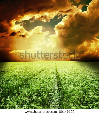 green field with road under dramatic sky