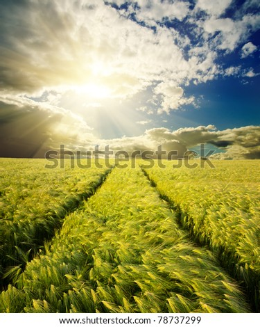 green field with road under sunset - stock photo