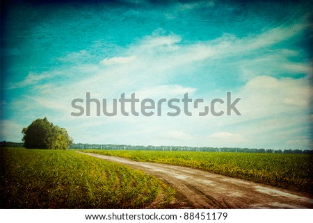 green field with the rural road ...