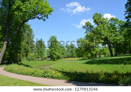 green fields in summer in the Park of the Catherine Palace  #1279813546