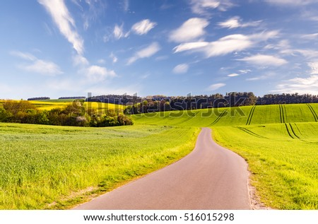 green fields in the spring, rural landscape #516015298