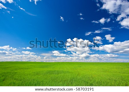 green filed under blue skies with white clouds
