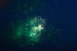 Green fireworks at night