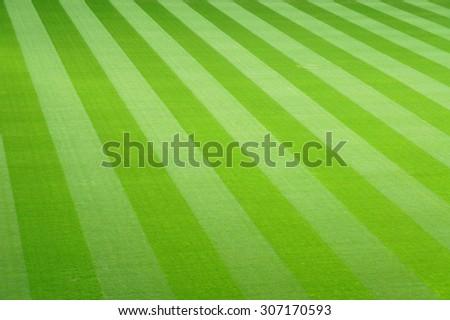 green football field grass background