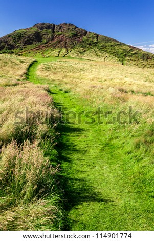 Green footpath to the top of hill in summer
