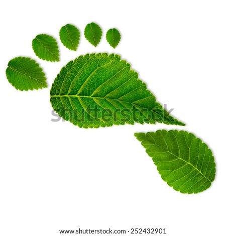 thesis of ecological footprint