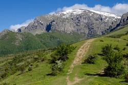 Green forest and tourist path to Botev peak, Stara Planina mountain, Bulgaria